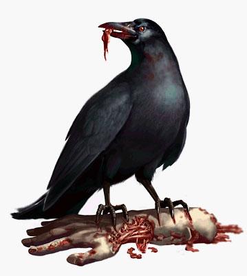 crow00.jpg.d897a4190f7ad9d7624e2e770eb16bea.jpg