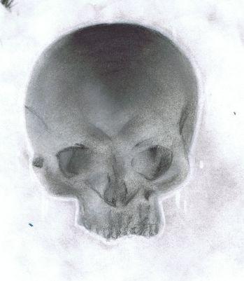 skull.jpg.9e473317640bf0cf1808650d6169ea03.jpg