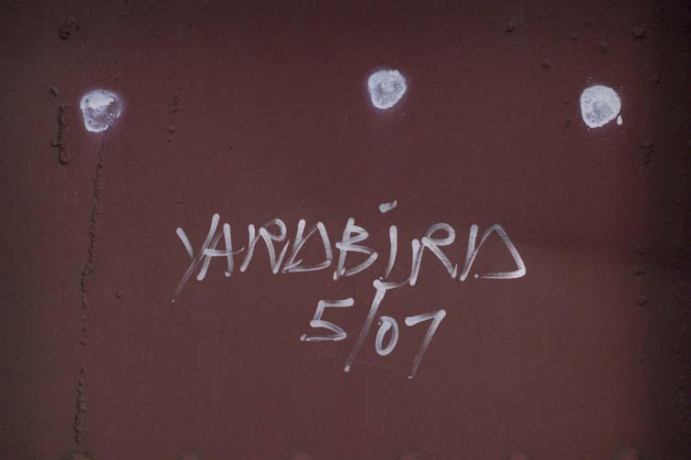 yardbird.jpg.c80c39e03eb3b864117c004c8a0a9c45.jpg