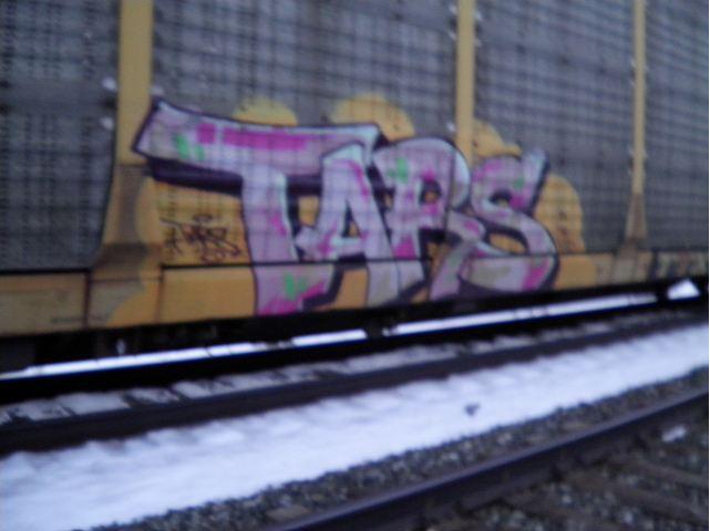 tars.JPG.08a6054ec168422a141732104b0120e9.JPG