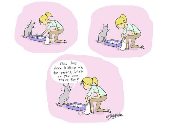 167de797b59e0a9923497f3f512cabd5--cartoon-cats-cat-cartoons.jpg.6a600dc0c9ac43b2f3ee7e72941a6cea.jpg