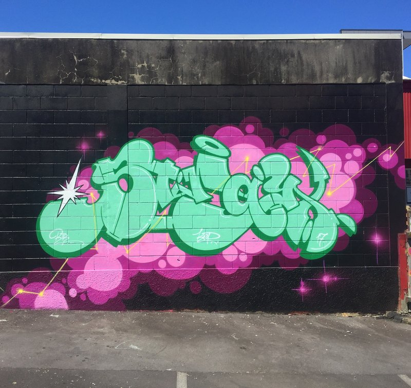 Stray-Auckland-graffiti-Sugar-artists-acrylic.thumb.jpg.12d0756c07535002b43ba04e0889d891.jpg