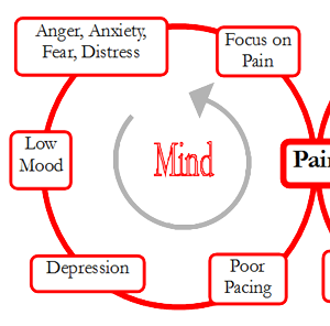 pain-cycle.png
