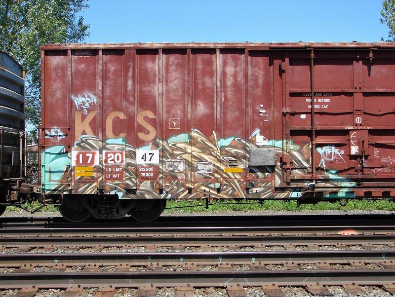 DSC07262.JPG