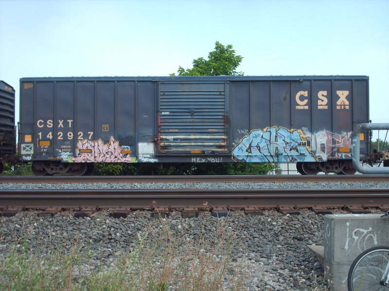 PICT5699.JPG