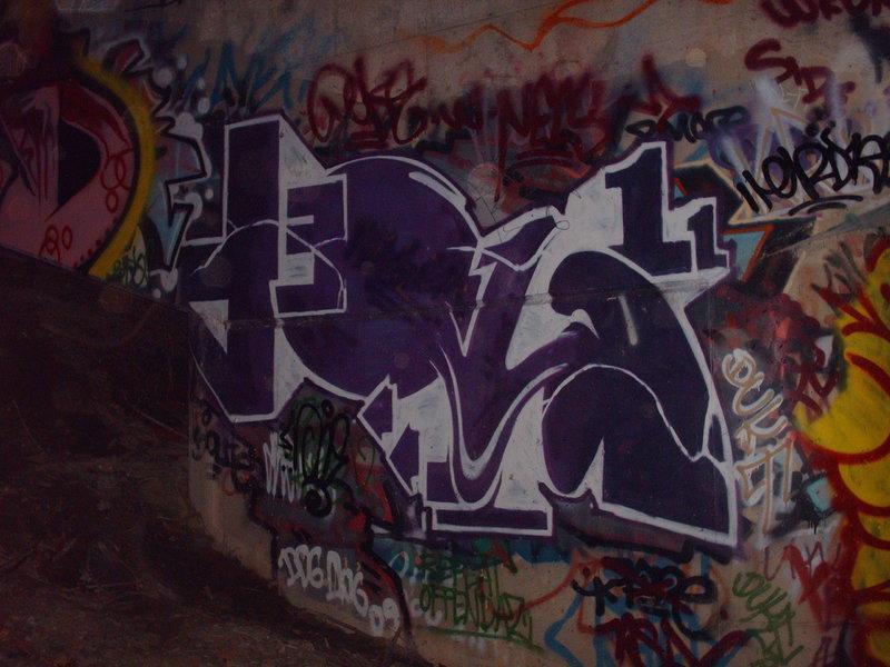 PICT4451.JPG