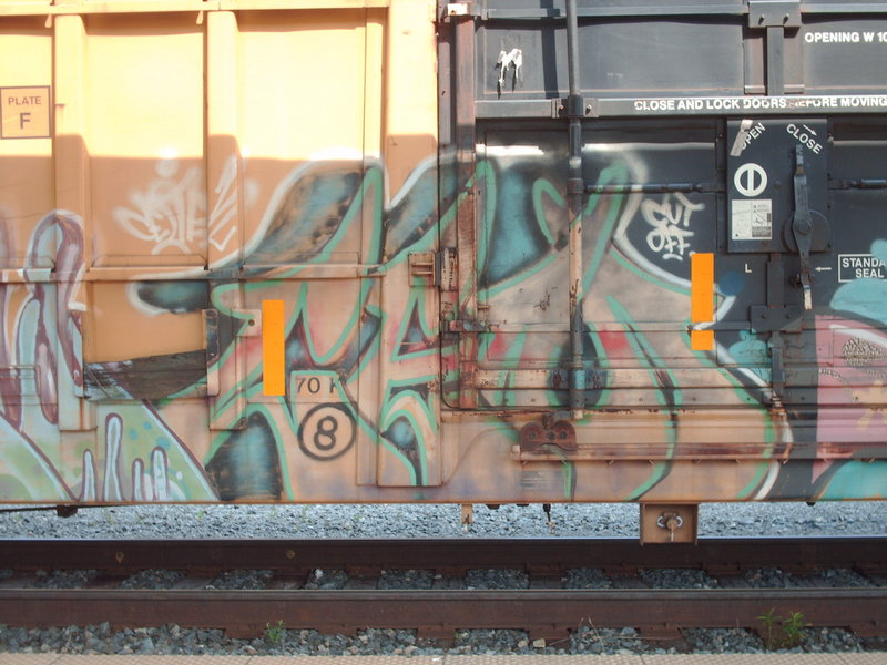 PICT5706.JPG
