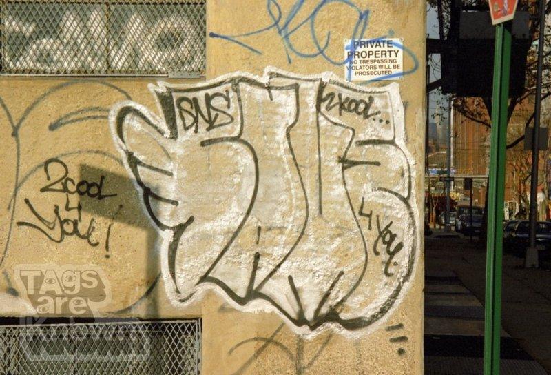 Same_Graffiti 13.jpg
