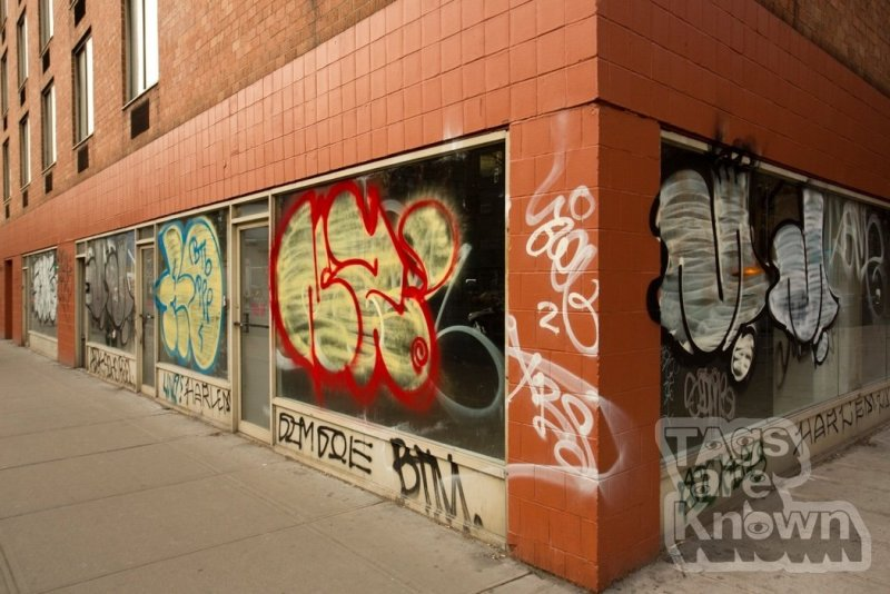 Houston Remo Same Adek Mint Nemz Harlem JimJoe Azel Graffiti 2.jpg