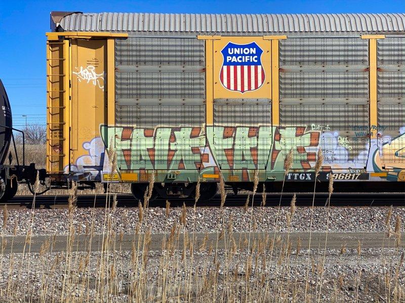 DFF07AAF-5102-4FAA-9ADB-EEBF341B2F1E.jpeg