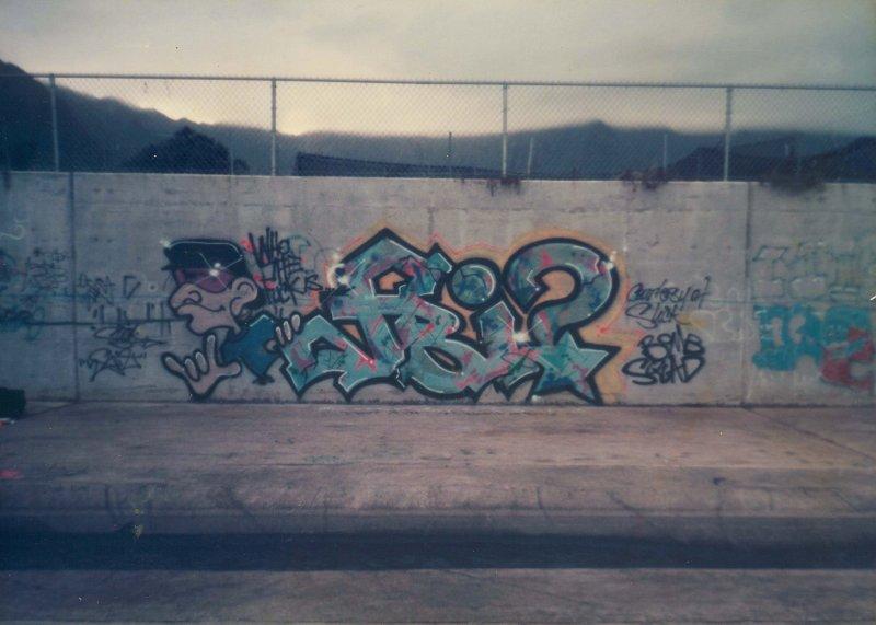 HAWAII GRAFF VOL 2 421.jpg