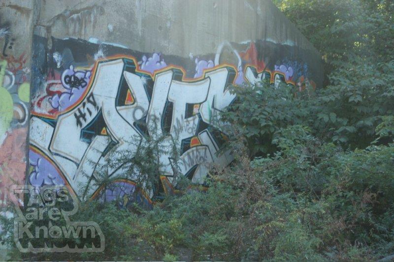 503619062_NewJerseyLotGraffitiQues.thumb.jpg.4128d44f49bec0cfb8f33414a7c29a75.jpg